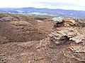 Eroded Peat - geograph.org.uk - 1286454.jpg