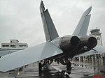 Esquadrilha da Fumaça 60 anos - Pirassununga - US NAVY F-A-18 - Super Hornet - panoramio (2).jpg