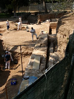 Real Palace - Excavating in the ruins of the Del Real Palace of Valencia, 2009.