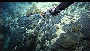 Mid-Atlantic Ridge - Basaltic rocks of the MAR collected by the Hercules ROV during the 2005 Lost City Expedition.