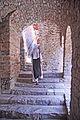 F10 51 Abbaye Saint-Martin du Canigou.0141.JPG