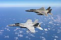 FA-18E Super Hornet of VFA-115 and 67th Fighter Squadron F-15D Eagle in flight off Okinawa on 14 March 2018 (180314-N-CF980-010).JPG