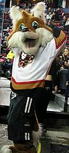 "A mascot in the form of an anthropomorphic fox. It has brown ""fur"" with a white muzzle, oversized eyes and mouth."