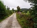 Farm road to Waen Ucha - geograph.org.uk - 218953.jpg