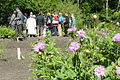 Farmacognostic Garden Poznan 2012 (2).JPG