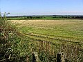 Farmland at Christielands - geograph.org.uk - 574921.jpg