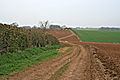 Farmland near Scalford, Leicestershire - geograph.org.uk - 157040.jpg