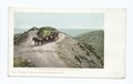 Farnsworth Loop, Santa Catalina Island, Calif (NYPL b12647398-62088).tiff