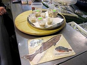 Shark meat - Fermented shark meat