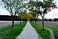 Fiastra sentiero 01.jpg