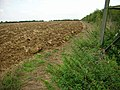 Field-edge Footpath - geograph.org.uk - 234123.jpg