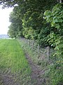 Field boundary - geograph.org.uk - 180037.jpg