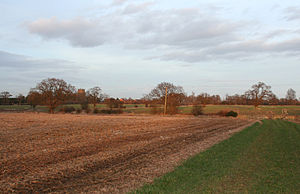 Acton, Cheshire - Farmland near Madam's Farm