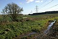 Fields and Power Lines - geograph.org.uk - 305252.jpg