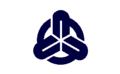 Flag of Tomiyama Aichi.png