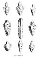 Flaked arrow heads. Wellcome M0016330.jpg