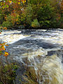 Flickr - Nicholas T - Tobyhanna Creek.jpg
