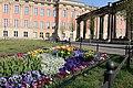 Flowers on Potsdam street 1 (April, 2018).jpg