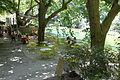 Fontaine-de-Vaucluse 20150722 11.jpg