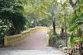 Footbridge - Agri-Horticultural Society of India - Alipore - Kolkata 2013-01-05 2231.JPG
