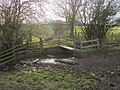 Footpath across brook - geograph.org.uk - 1209640.jpg