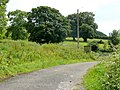 Footpath and farm road - geograph.org.uk - 1399813.jpg