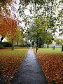 Footpath through the autumn leaves - geograph.org.uk - 1033523.jpg