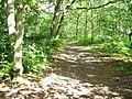 Footpath to Fox Corner - geograph.org.uk - 845609.jpg