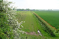 Footpath to Gardham - geograph.org.uk - 826327.jpg