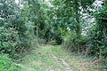 Footpath to the canal - geograph.org.uk - 1443762.jpg