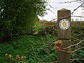 Footpath waymarker Great Gidding - geograph.org.uk - 714543.jpg