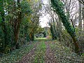 Former Banbury to Cheltenham railway trackbed, Little Rollright - geograph.org.uk - 605775.jpg