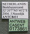 Formica pratensis casent0173861 label 1.jpg