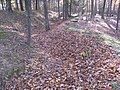 Fort Mill Ridge Civil War Trenches Romney WV 2008 10 30 24.JPG