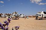 Four UTair Mil Mi-8s in Western Sahara.jpg