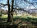 From the Wayfarer's Walk near East Hoe Manor - geograph.org.uk - 1269281.jpg