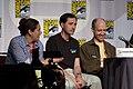 Futurama Panel (2010).jpg