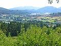 Galdácano - vistas desde el barrio de Elexalde 3.jpg