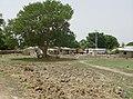 Gambia & Senegal 2009 (3686519903).jpg