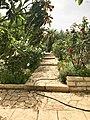 Garden in Amman.jpg