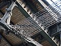 Gare de Lyon - Grand hall (1).JPG