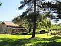 Garland Ranch Regional Park - Carmel Valley, CA - DSC06861.JPG