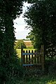 Gate Near Lambs Cross - geograph.org.uk - 214796.jpg