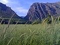 Gelye rshave karoj - panoramio (2).jpg