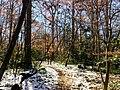 Georgia snow IMG 5579 (27191514649).jpg