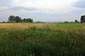 Gfp-minnesota-voyaguers-national-park-view-of-marsh.jpg