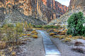 Gfp-texas-big-bend-national-park-path-into-the-canyon.jpg