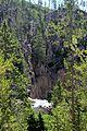 Gibbon Falls. Yellowstone NP. 02.JPG
