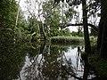 Gmina Piecki, Poland - panoramio (14).jpg