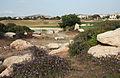 Golf fields 2801.jpg